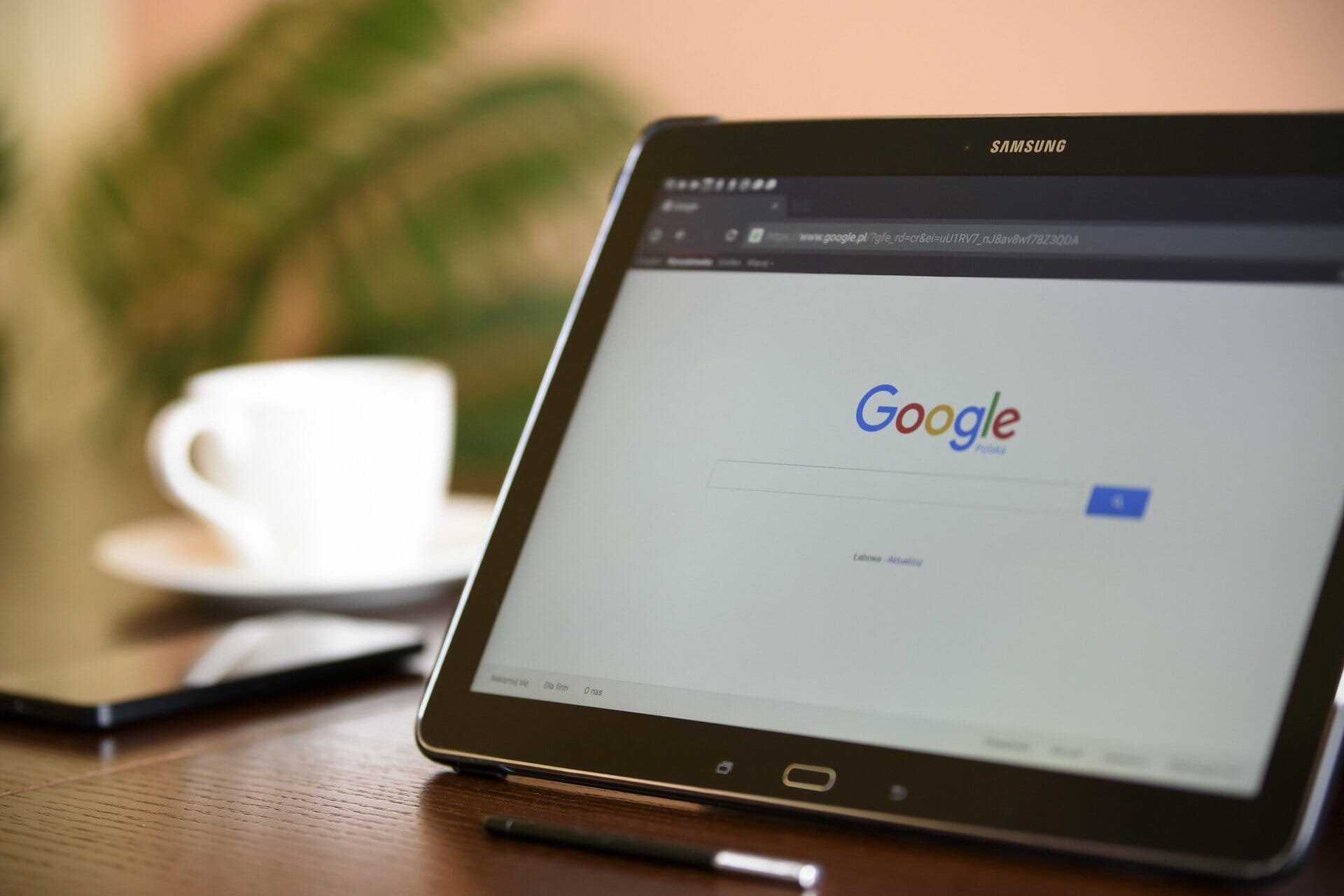 Search Engine Optimization elementi
